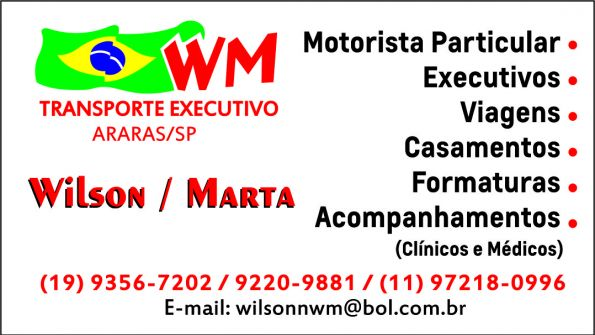 WM TRANSPORTES EXECUTIVOS