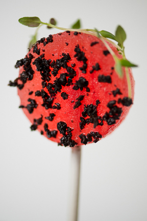 Watermelon Lollipops Black Olive Powder Basil 02