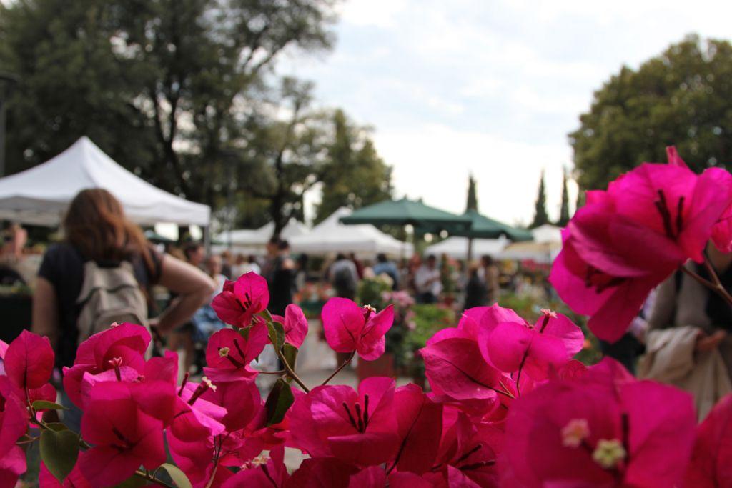 Perugia Flower Show En Perugia