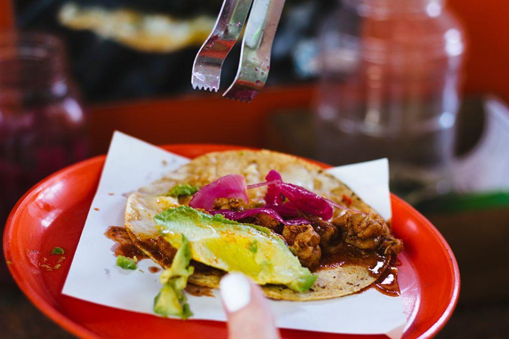 Expo Comida Latina Food