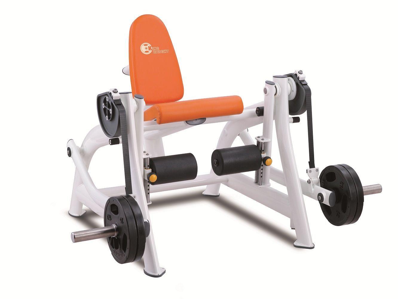 Photos maquinas para gimnasio elite m fitness gym s l for Equipo para gym