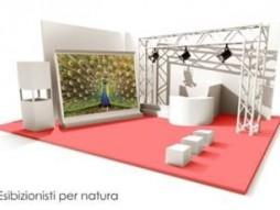 Expo Allestimenti