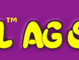 Tual Agency