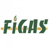 Figas & Vehigas
