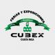 Cubex S.A