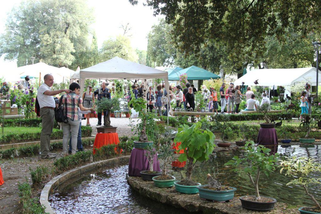 Perugia Flower Show Manifestazione Invernale
