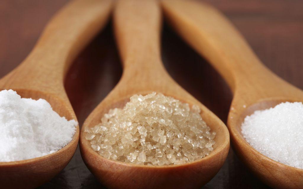 Sugar Industry Sugarex America
